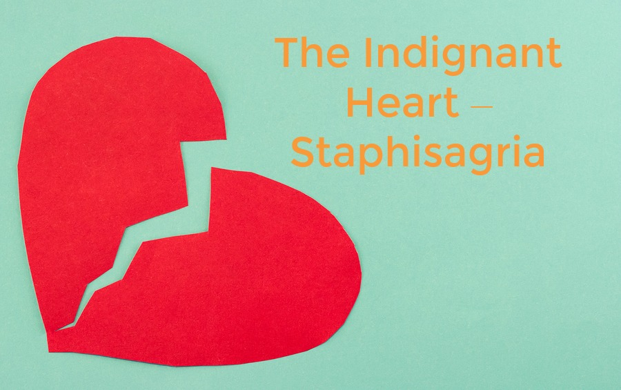 Heart - Staphisagria